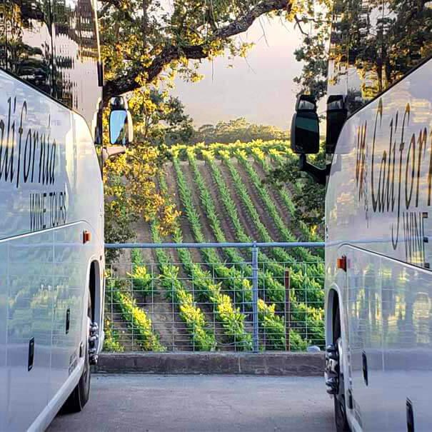 Wine Tours / Airport Transportation